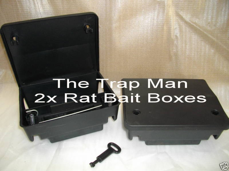 rat bait stations